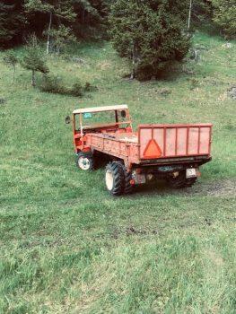 FC772EBA-9750-4039-86DD-4BF34AED2AAE.jpeg